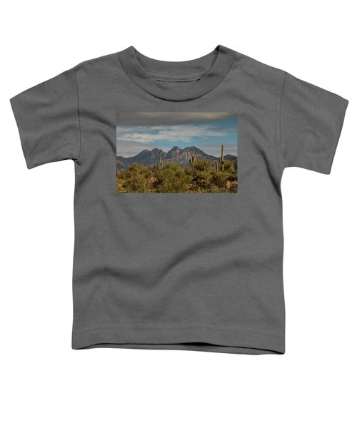 Four Peaks Painterly Toddler T-Shirt
