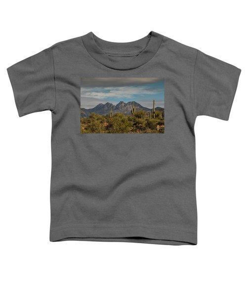 Four Peaks Toddler T-Shirt