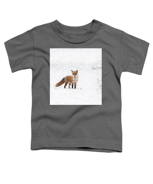 Fox 1 Toddler T-Shirt