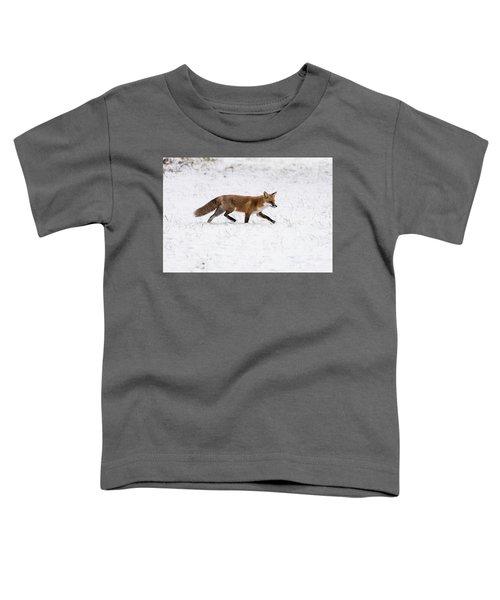 Fox 3 Toddler T-Shirt