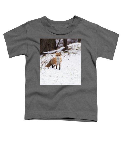 Fox 4 Toddler T-Shirt