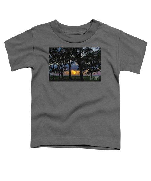 Framed Toddler T-Shirt