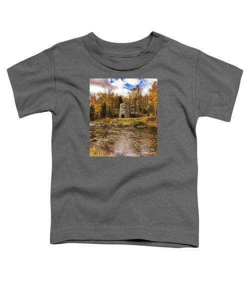 Franconia Fall Toddler T-Shirt