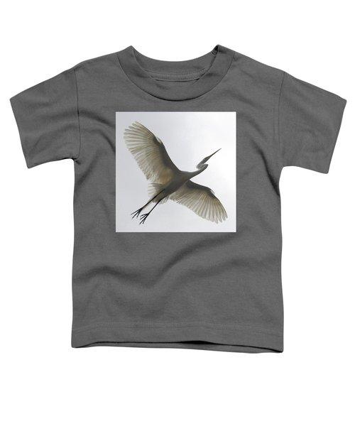 Freedom Of Flight Toddler T-Shirt