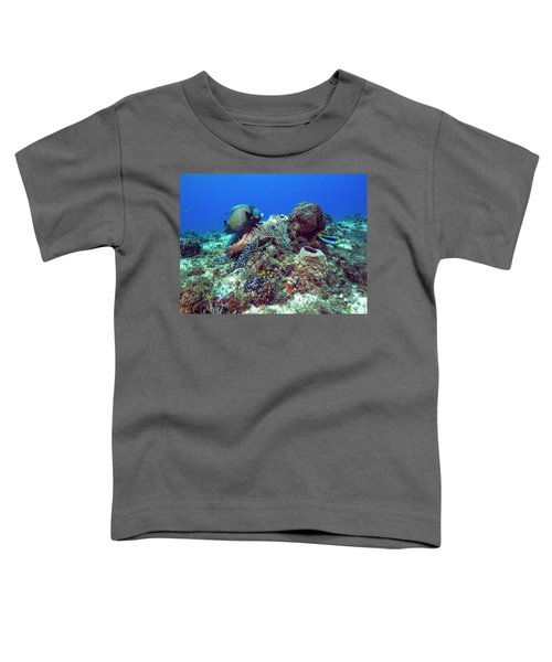 French Angelfish And The Green Turtle Toddler T-Shirt