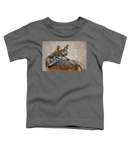 From Out Of The Mist Toddler T-Shirt
