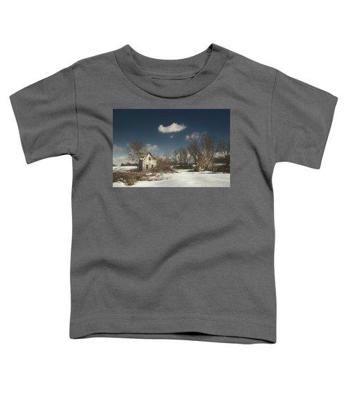 Frozen Stillness Toddler T-Shirt