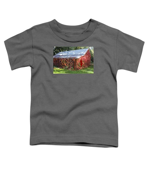 Funk Smoke And Ice House Toddler T-Shirt
