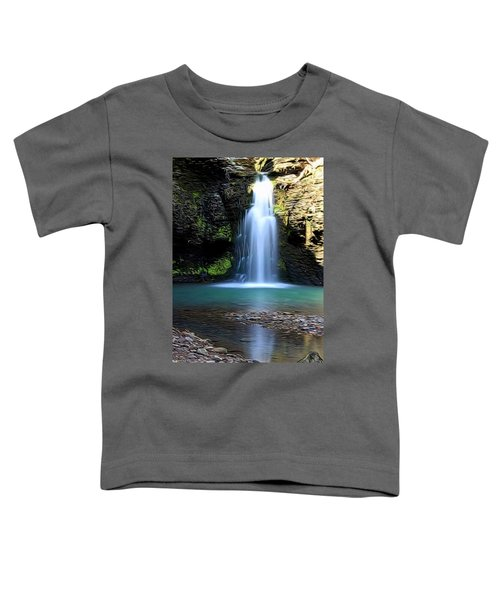Fuzzy Butt Falls Toddler T-Shirt