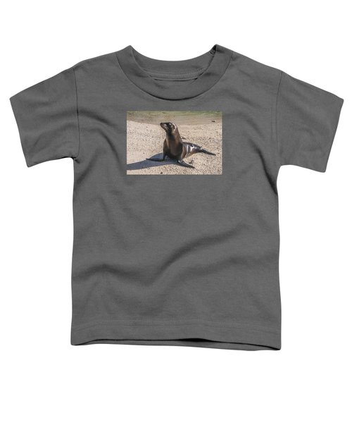 Galapagos Sea Lion Toddler T-Shirt