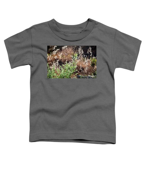 Garden Contre Jour 2 Toddler T-Shirt