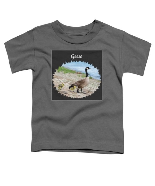 Geese In The Clouds Toddler T-Shirt