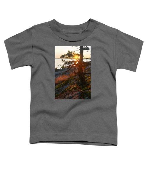 Georgian Bay Sunrise Wild Grass Toddler T-Shirt