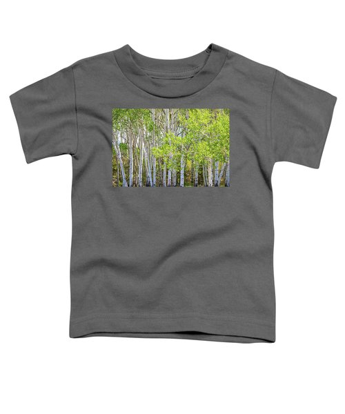 Getting Lost In The Wilderness Toddler T-Shirt by James BO Insogna