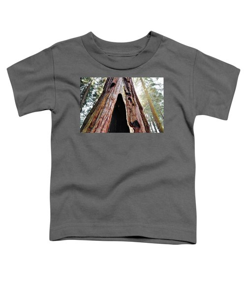 Giant Forest Giant Sequoia Toddler T-Shirt