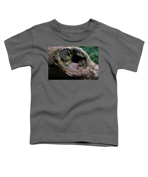 Giant Knot In Tree Toddler T-Shirt