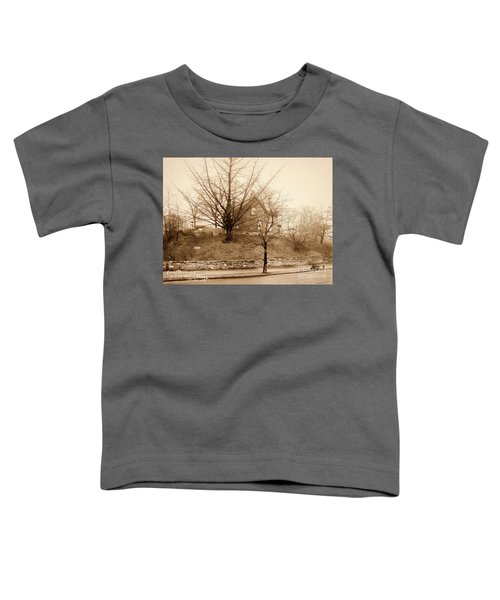 Ginkgo Tree, 1925 Toddler T-Shirt by Cole Thompson