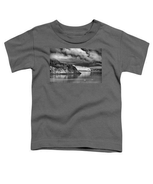 Glacier Bay Alaska In Bw Toddler T-Shirt