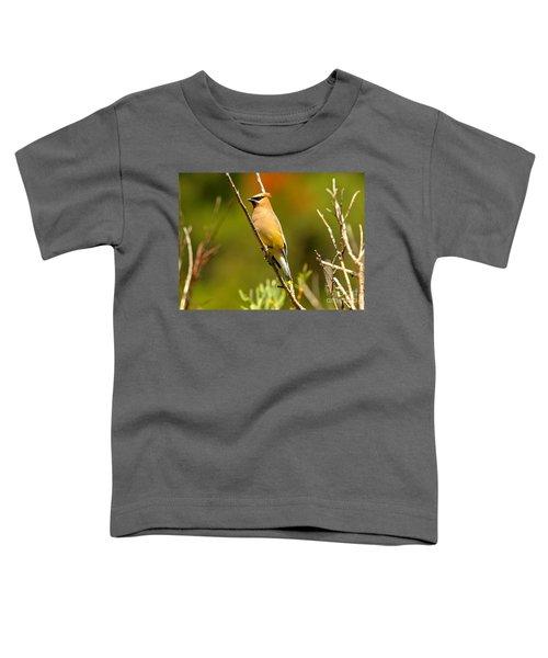 Glacier Cedar Waxwing Toddler T-Shirt by Adam Jewell