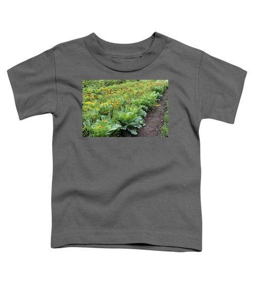 Glenveagh Castle Gardens 4276 Toddler T-Shirt