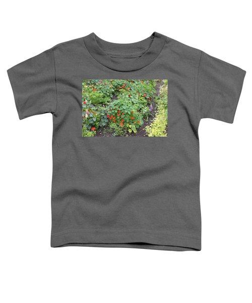 Glenveagh Castle Gardens 4278 Toddler T-Shirt