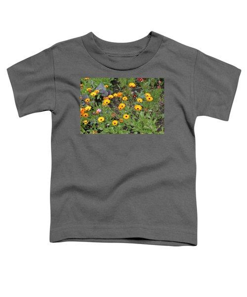 Glenveagh Castle Gardens 4279 Toddler T-Shirt