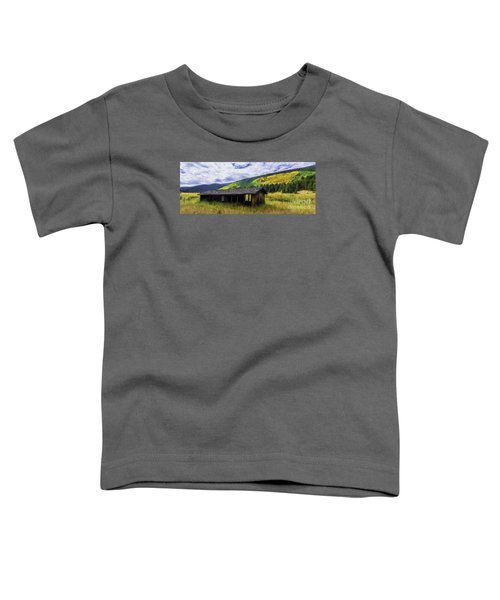 Gold Country  Toddler T-Shirt