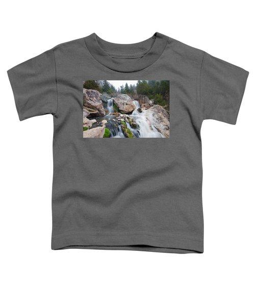 Goldbug Hot Springs Toddler T-Shirt