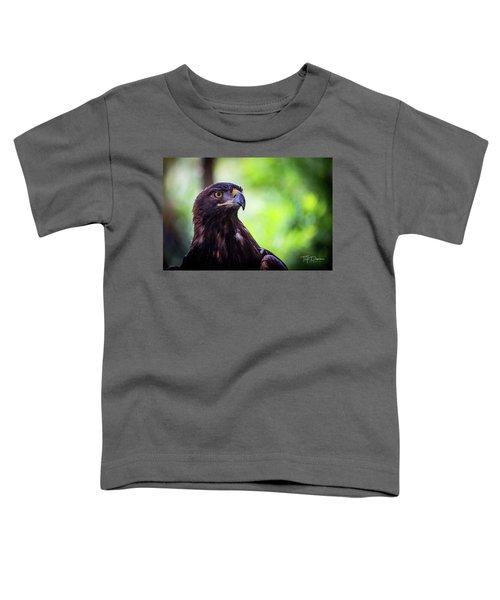 Golden Eagle 2 Toddler T-Shirt