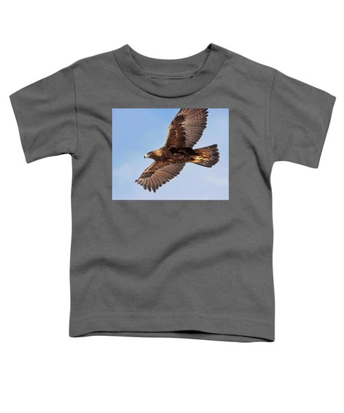 Golden Eagle Flight Toddler T-Shirt