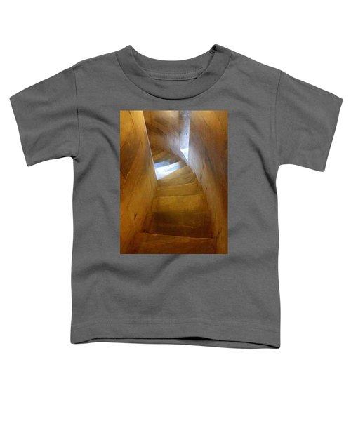 Golden Echo Of Blue Toddler T-Shirt