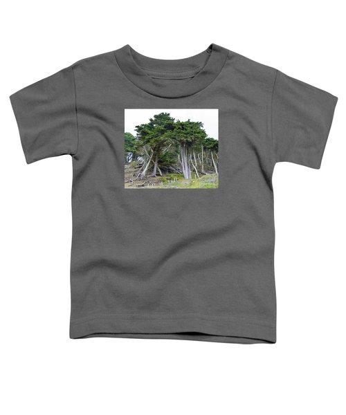 Golden Gate Sentinels Toddler T-Shirt