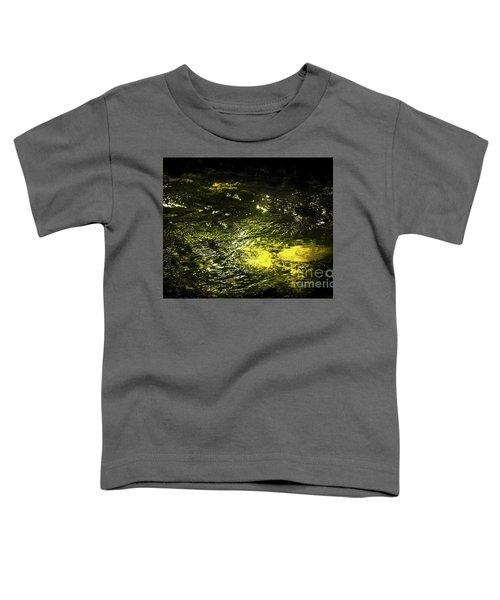 Golden Glow Toddler T-Shirt by Tatsuya Atarashi