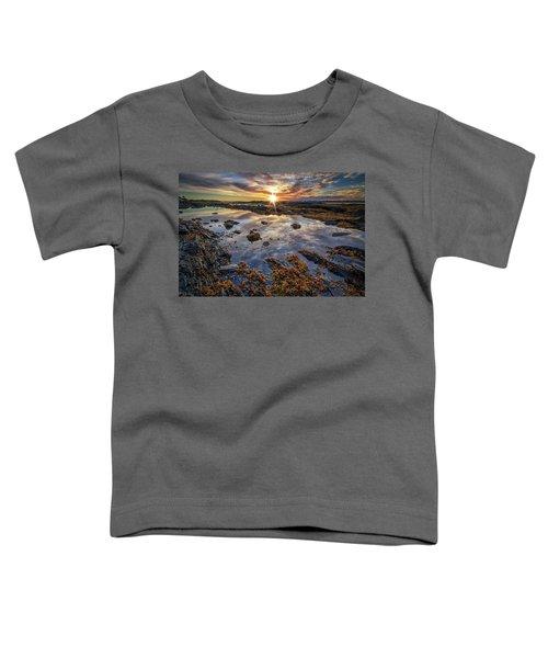 Golden Hour At Pott's Point Toddler T-Shirt