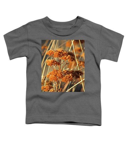 Golden Reach Toddler T-Shirt