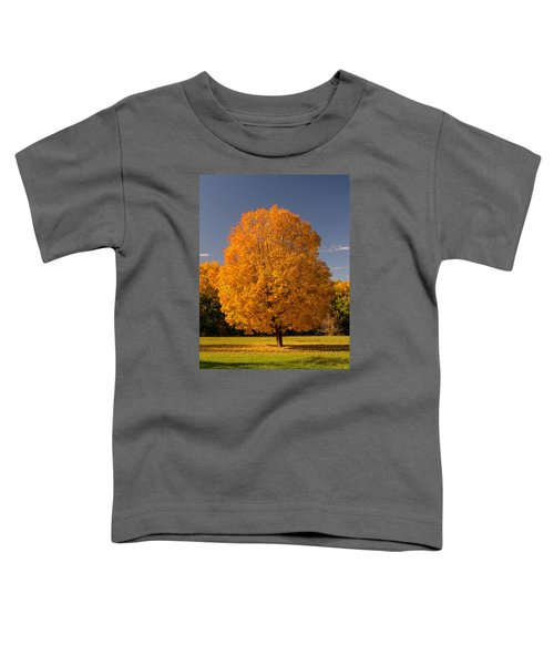 Golden Tree Of Autumn Toddler T-Shirt
