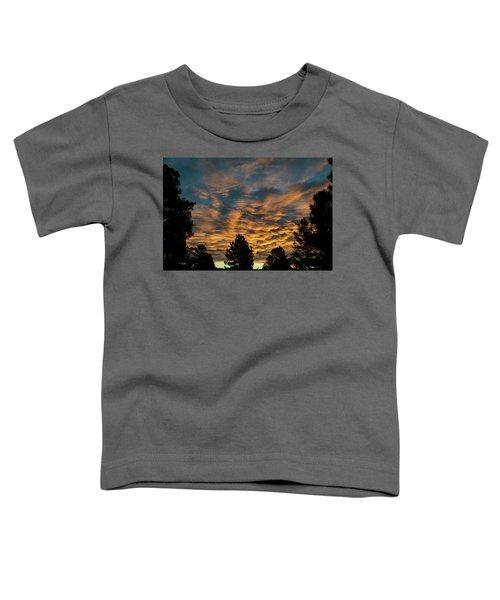 Golden Winter Morning Toddler T-Shirt