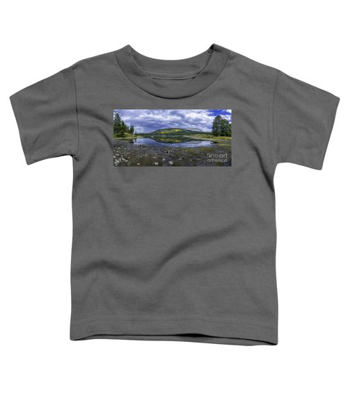 Goose Pasture Tarn Toddler T-Shirt