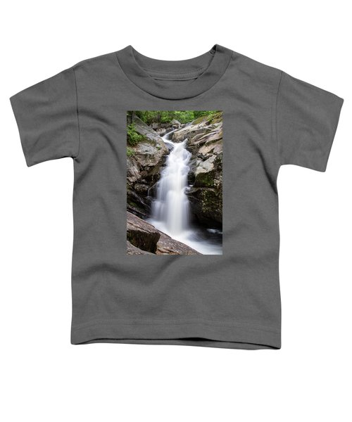 Gorge Waterfall Toddler T-Shirt