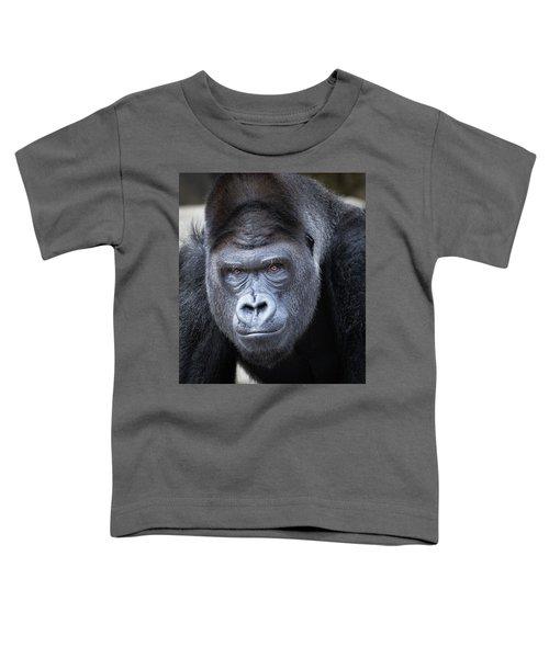 Gorrilla  Toddler T-Shirt