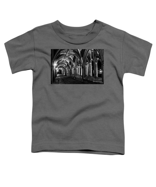 Gothic Arches Toddler T-Shirt
