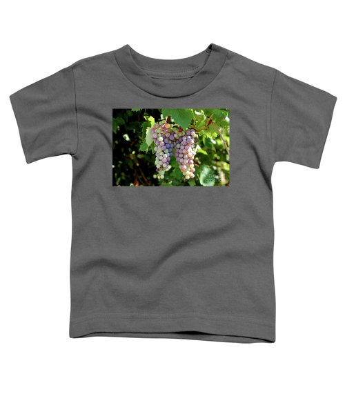Grapes In Color  Toddler T-Shirt