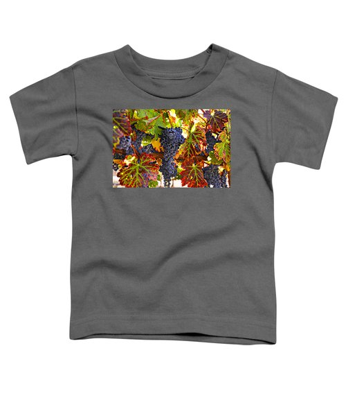 Grapes On Vine In Vineyards Toddler T-Shirt