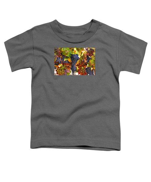 Grapes On Vine In Vineyards Toddler T-Shirt