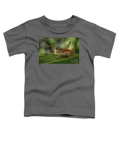 Grasshopper And Palm Frond Toddler T-Shirt