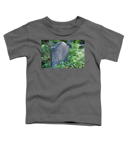 Grave Of Mary Hall Toddler T-Shirt