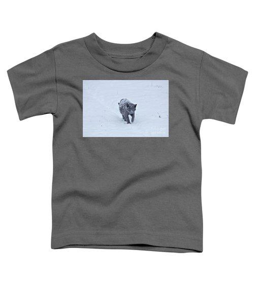 Gray On White Toddler T-Shirt