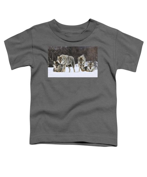 Gray Wolves Norway Toddler T-Shirt