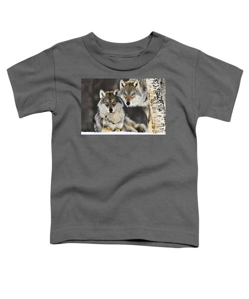 Gray Wolf Canis Lupus Pair In The Snow Toddler T-Shirt