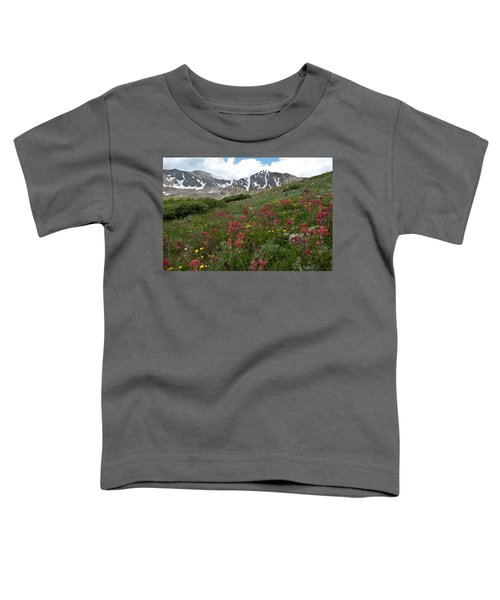 Gray's And Torreys Toddler T-Shirt